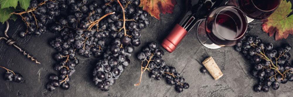 Le verre ballon qui sublime les dégustations de vins